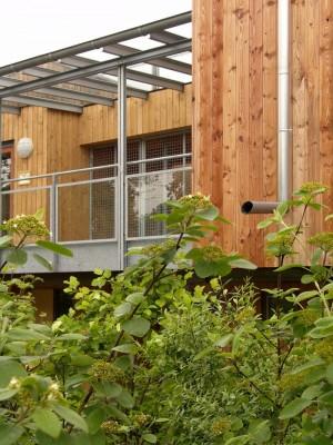 cases de fusta